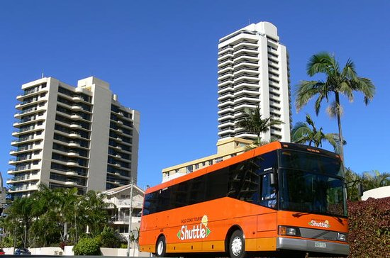 Gold Coast Transport Pass with Optional Round-Trip Airport Transfer