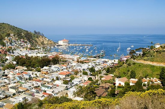 Catalina Island Avalon Scenic Tour