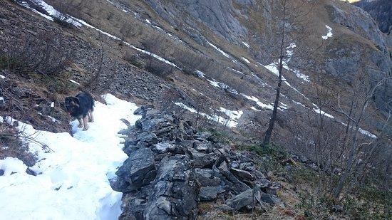 Lauenen, Sveits: DSC_2152_large.jpg