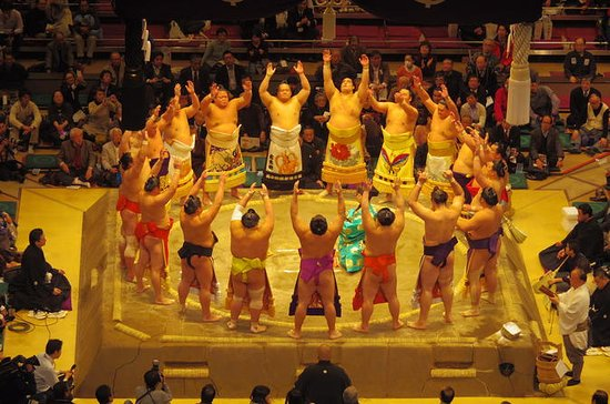 Sumo Wrestling Tournament Experience ...