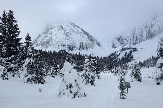 Snowshoe in Kananaskis Country