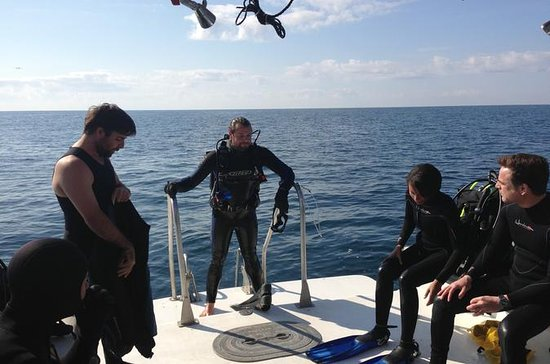 Dive Charter: Inshore Wreck and...