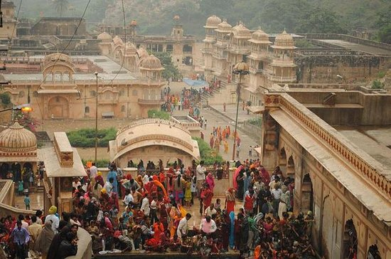 Private Half-Day Tour of Jaipur and...