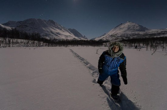 Arctic Northern Lights Snowshoeing...