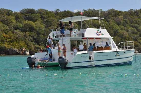 Catamaran Sailing Tour from Puerto...