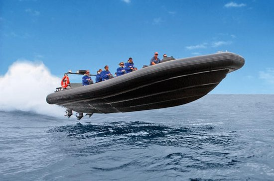 High-Speed ​​Offshore Thrill Ride ...