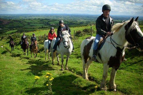 Scenic Horseback Riding Tour through...