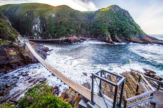 Tsitsikamma National Park Guided Day Tour from Port Elizabeth