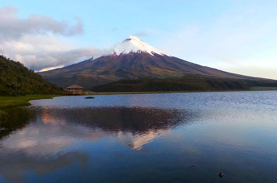 Cotopaxi Full-Day Tour from Quito...
