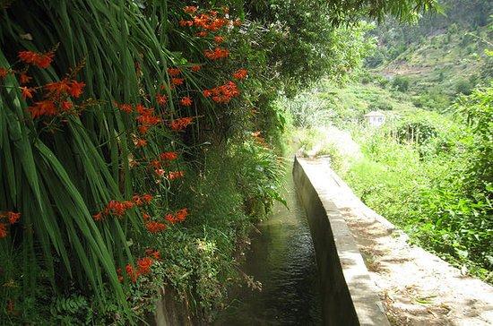セラD'Água渓谷 - レヴァダウォーク