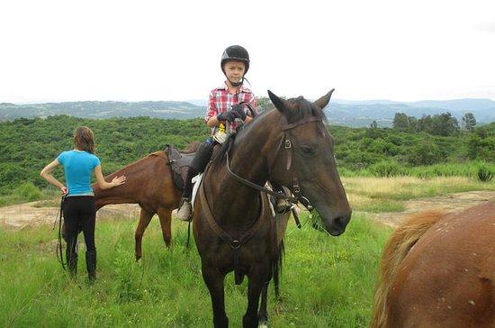 Equitación en Nelspruit