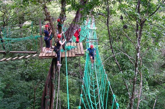 High Ropes Tour på Adventure Park fra...