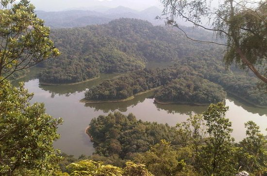 Private Tour: Bukit Tabur Hike with a...