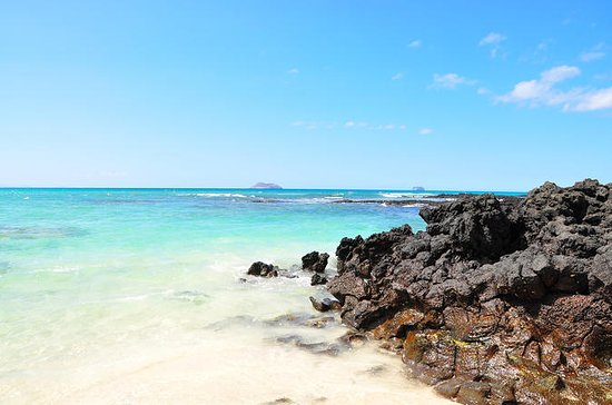 The 10 Best Things To Do In Galapagos Islands 2018 With