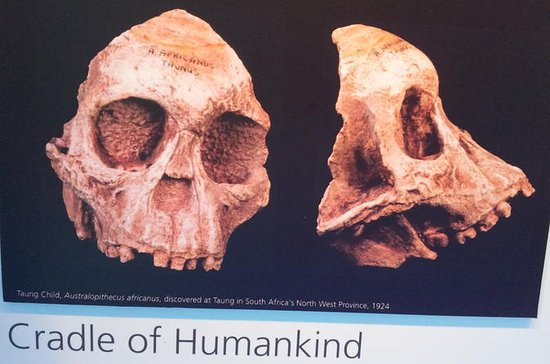 Cradle of Humankind and Maropeng Day...