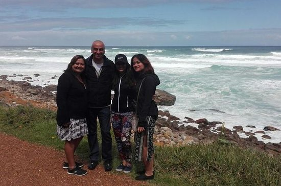 Full-Day Private Tour to Cape Point