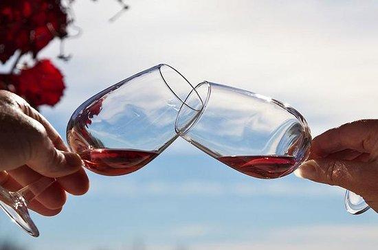 Excursão tradicional na vinícola...