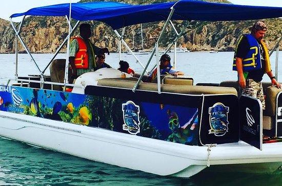 Privat personlig snorkling tur i Los...