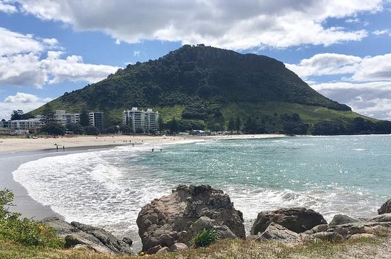 Mt Maunganui Day Trip from Auckland