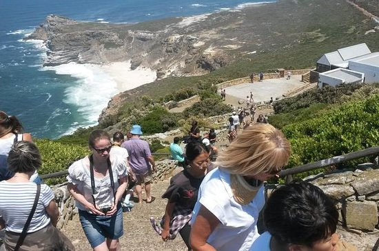 Cape Point and Winelands Full Day Tour...