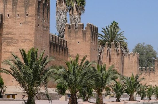 Tiout Oasis et Taroudant Excursion...