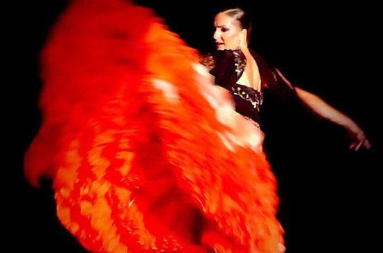 Show de flamenco en vivo y cena de...