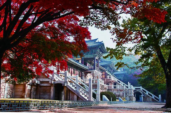 3-Day Tour of Eastern Korea from...