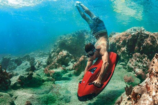 Excursión a los arrecifes de la costa...