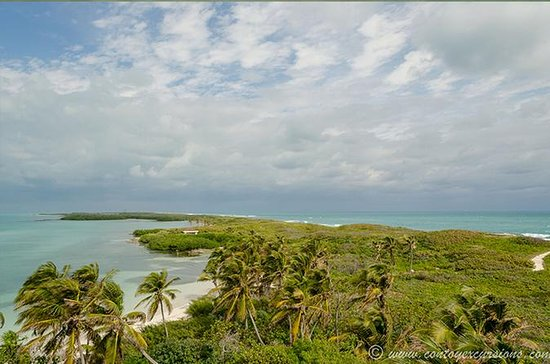 Isla Contoy, Isla Mujeres Day Trip from ...