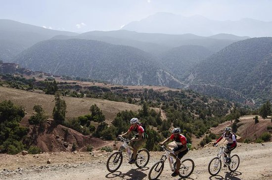 6-Day Mountain Biking Tour in the...