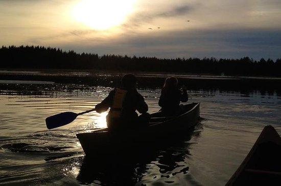 Private Canoe Safari to River...