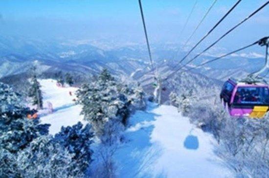 Yongpyong Gondola Day Trip from Seoul...