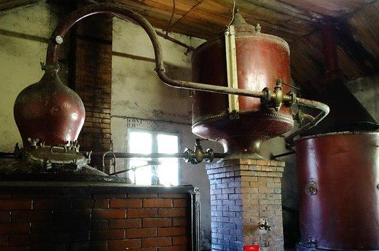 Visite privée du vin de Bordeaux et...