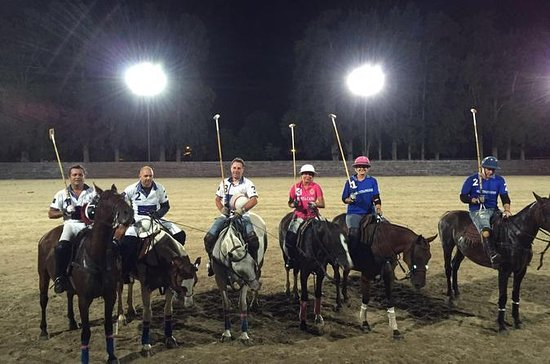 Polo Night - Polo Under the Stars