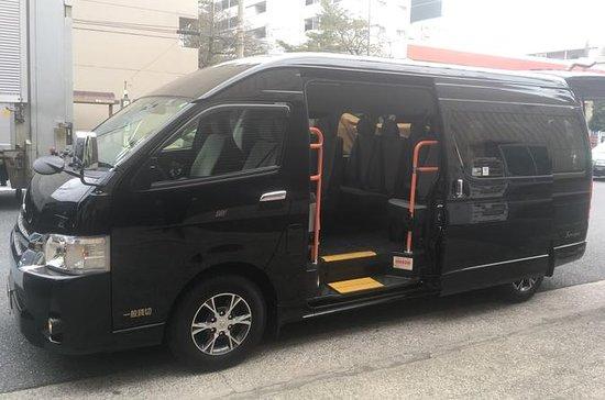 Small-Group Full-Day Tokyo Minivan Tour