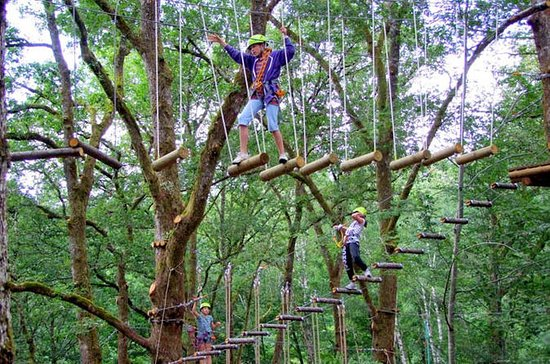 Full-Day Bali Treetop Adventure Park...