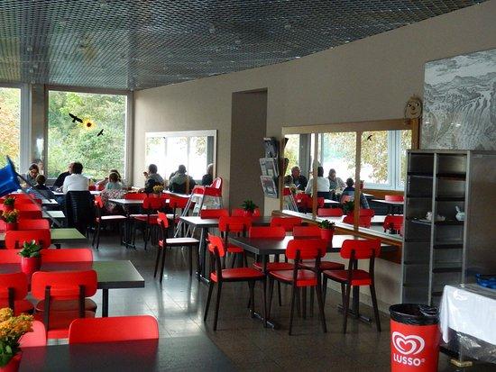 Salón comedor - Bild von Schlössli Wörth, Neuhausen am Rheinfall ...