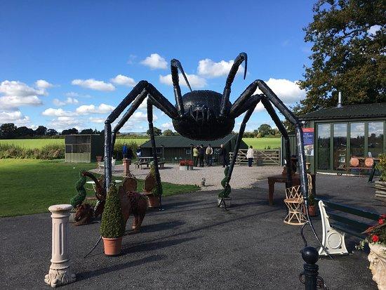 Oswestry, UK: photo0.jpg