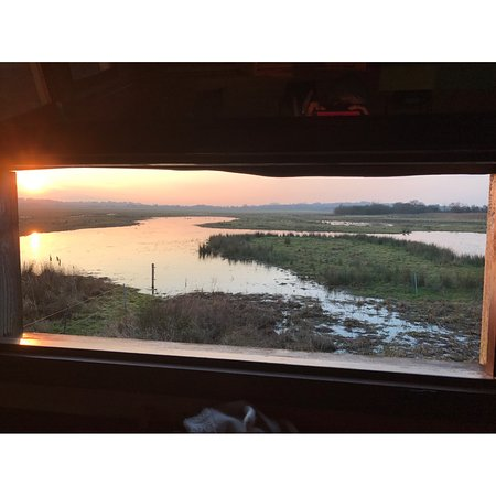 Beckley, UK: View from the hide