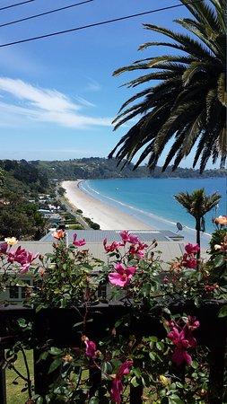 Ilha Waiheke, Nova Zelândia: 20161124_123415_large.jpg