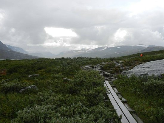 Västerbotten, Suecia: Piece of the Kungsleden