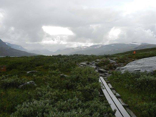 Vasterbotten County, Sweden: Piece of the Kungsleden