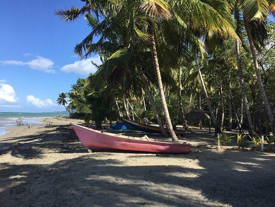 Gaspar Hernandez, República Dominicana: photo0.jpg