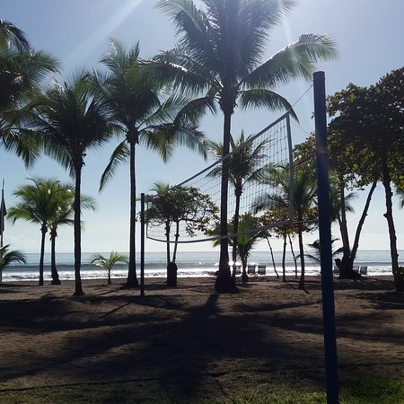 Barcelo Tambor: Vista desde el hotel a la playa