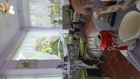 lavender n lace tea room picture of lavender n lace tea room lake alfred tripadvisor. Black Bedroom Furniture Sets. Home Design Ideas