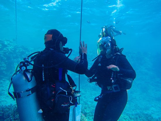 Ilios Dive Club : Open water dive course with Pascal at ilios