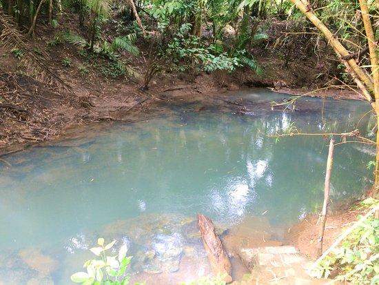 Punta Gorda, Belize : photo0.jpg