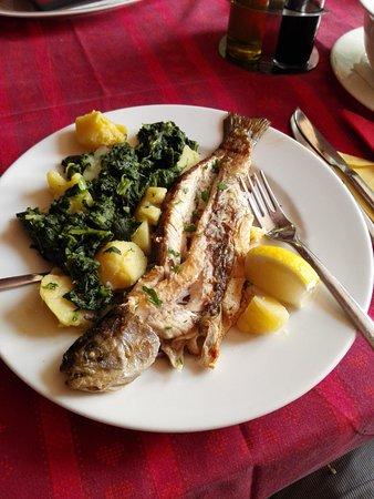 Gitanes: рыбка
