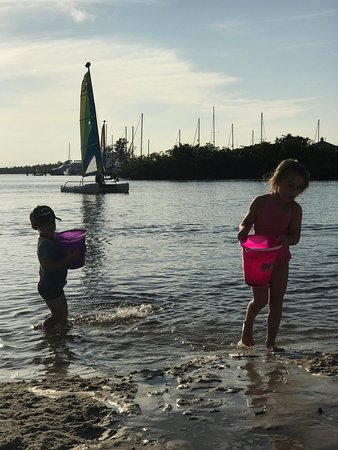 Port Saint Lucie, FL: photo3.jpg
