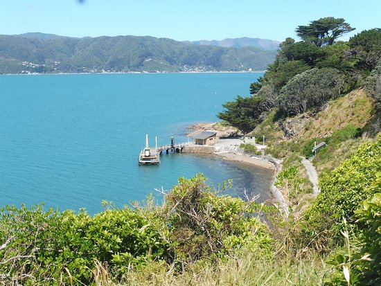 Matiu / Somes Island: the pier